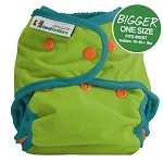 Best bottom diapers BIGGER all in two shell