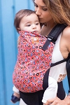 Tula Ergonomic Baby Carrier - Poppy Sky
